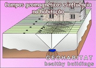 Geomagnetic-fields-house-geopathic-stress