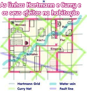 Hartmann and Curry lines effects houses